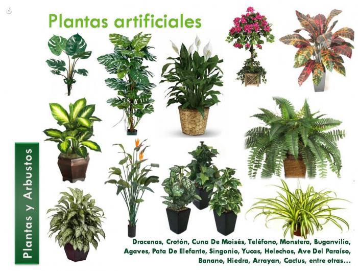 Rc arte y decoracion jardiner a jardineros jardines en - Arbustos artificiales para decoracion ...