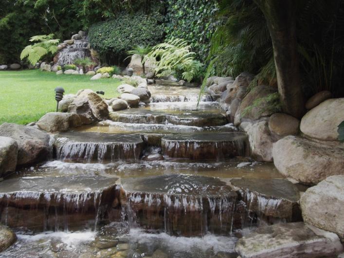 Arte y dise o de jardineria jose mercell construccion o for Jardineros en xochimilco