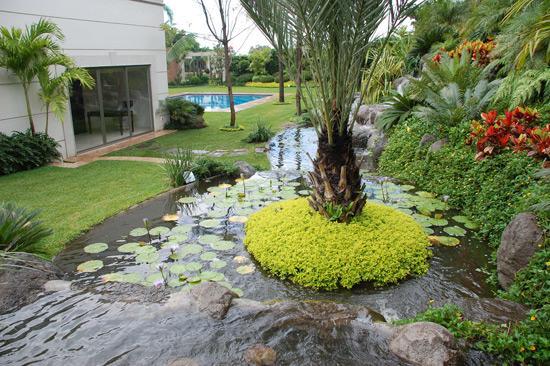 Land4scape en cuernavaca tel fono y m s info - Diseno de cascadas para jardin ...