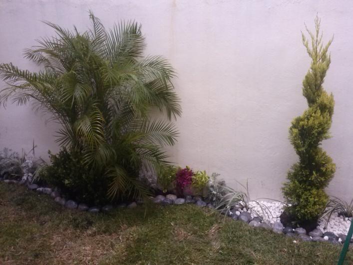 Asociaci n de jardineros de xochimilco en xochimilco for Jardineros en xochimilco