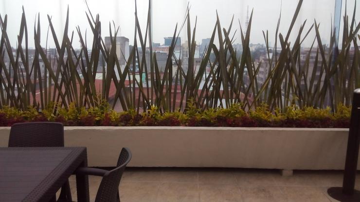asociaci n de jardineros de xochimilco en xochimilco On jardineros en xochimilco