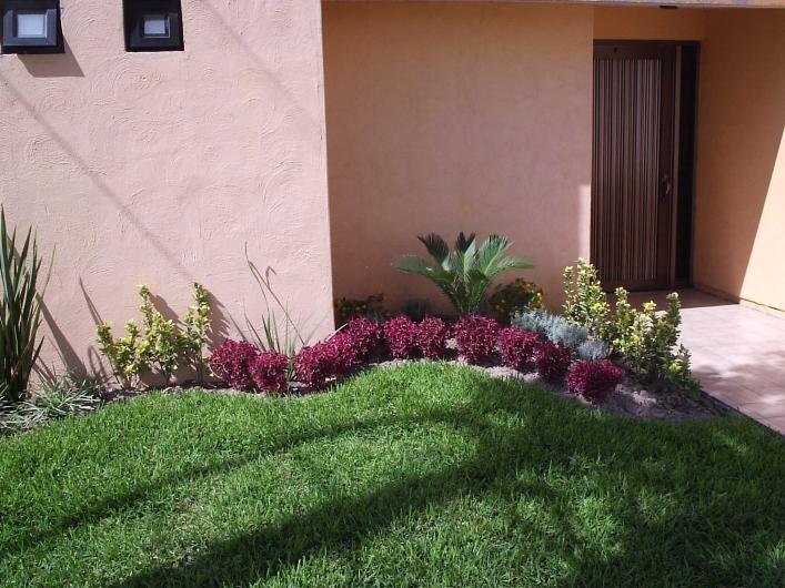 Jade Jardiner A Arte Y Dise O Exterior En Torreon