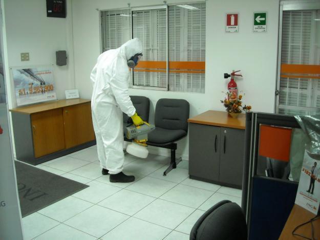 Arabi fumigaciones y control de plagas en puebla tel fono for Control de plagas badajoz