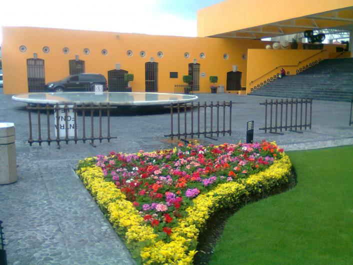 Servicios profesionales de jardineria y control de plagas en puebla tel fono y m s info - Servicios de jardineria ...