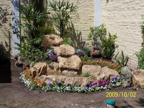 Jardines macetas y ambientacion en coyoacan tel fono y - Jardines en macetas ...