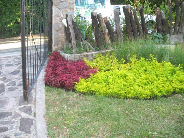 Vivero planeta verde en zapopan tel fono y m s info for Viveros de plantas de ornato