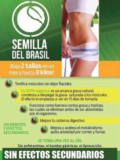 Semilla de brasil para adelgazar en monterrey