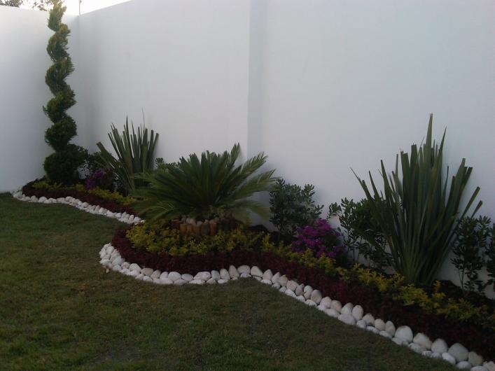 Inflorescencia un toque de elegancia en puebla tel fono y - Arboles decoracion interior ...