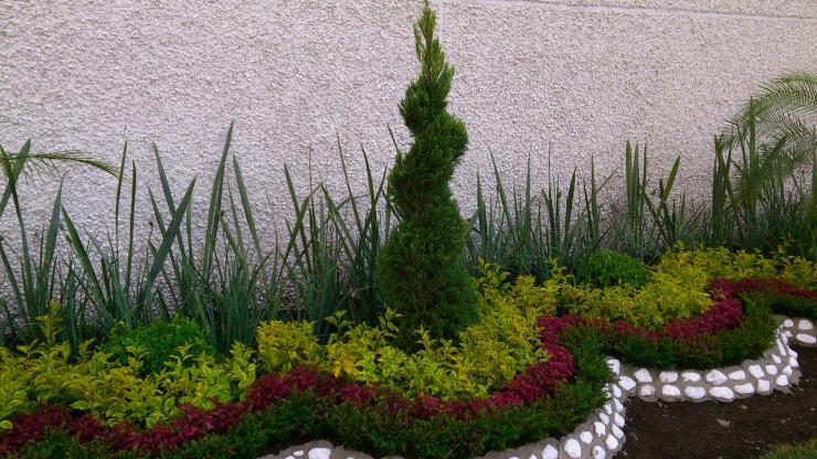 Viveros san esteban en xochimilco tel fono y m s info for Viveros de plantas de jardin