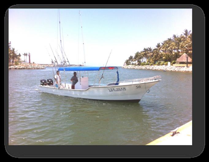 Nuevo vallarta sport fishing en puerto vallarta tel fono for Nuevo vallarta fishing