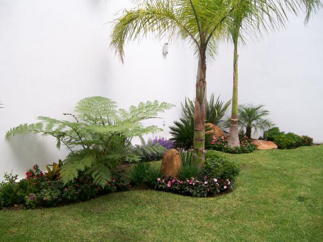 Jardineria chapoleo y armonizacion en tampico tel fono y - Todo sobre jardineria ...