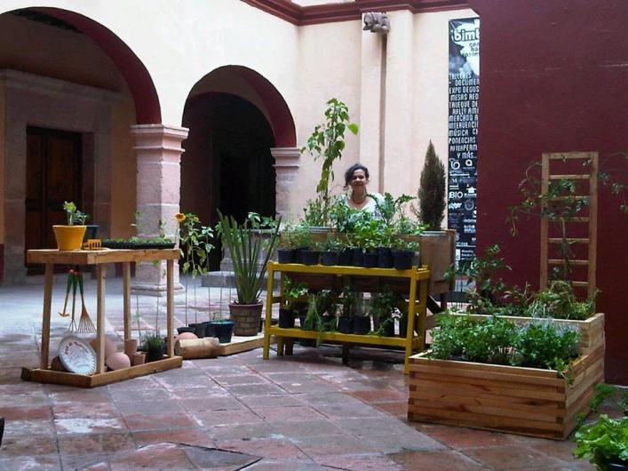 Aconza arte y jardiner a org nica en santiago de queretaro for Jardineria queretaro