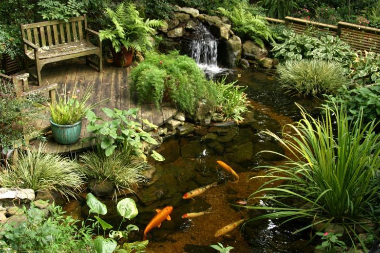 Estanques de jard n en m xico paisajismo for Jardines pequenos mexicanos