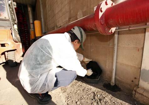 Eco x control de plagas en santa catarina tel fono y m s for Control de plagas badajoz