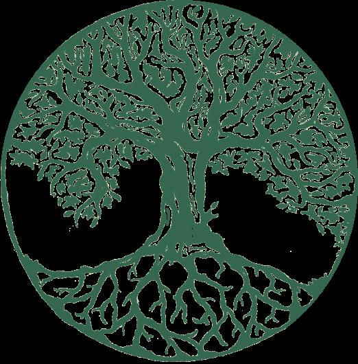 Consultoria ambiental y forestal esus en monterrey for Importancia economica ecologica y ambiental de los viveros forestales