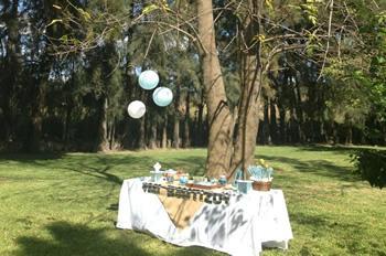Quinta los pinos jard n eventos en chapala tel fono y for Jardin infantil los pinos