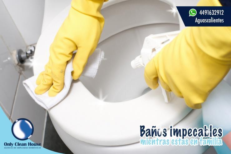 Agencia de servicios de limpieza en aguascalientes - Agencias de limpieza barcelona ...