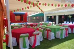 Triton 39 s pool ocean party en coyoacan tel fono y m s info for Clases de natacion df